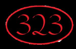 323 image